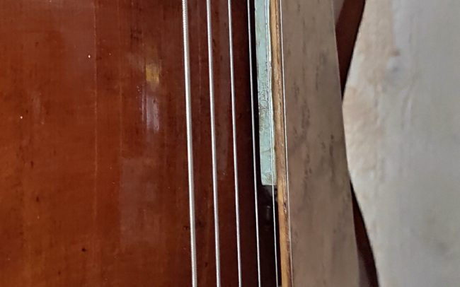 T.H.E. Guitare Jazz Archtop