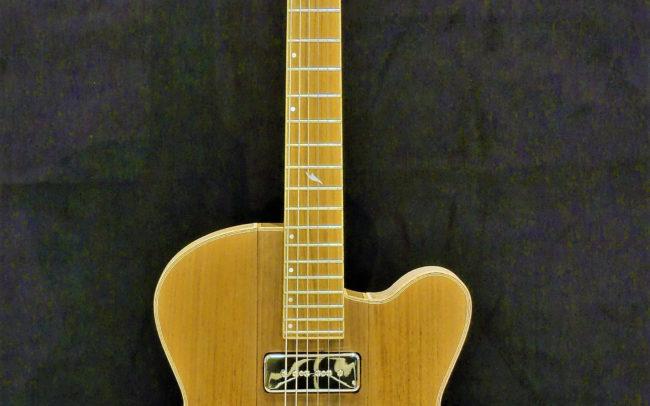 Guitare Osiris, Guitare Voyageuse et Modulaire - Tout Noyer © 2020 / Hervé BERARDET Maître Artisan Luthier -